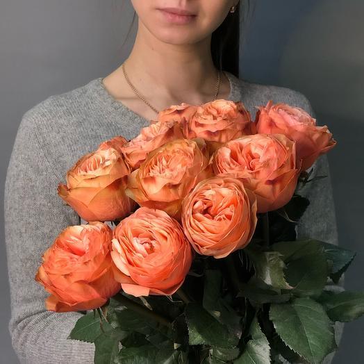 Роза Кахала 11шт