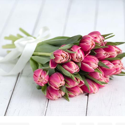 Пионовидные тюльпаны сорта Коламбус