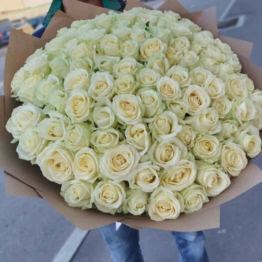 АКЦИЯ 101 белая Роза