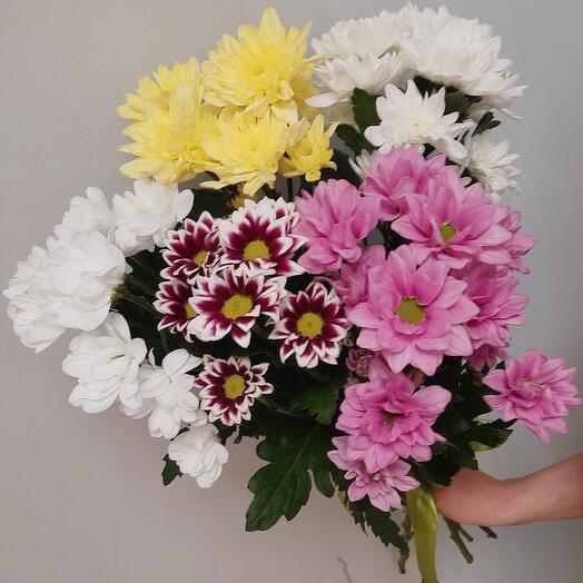Bouquet of chrysanthemums 5 pcs