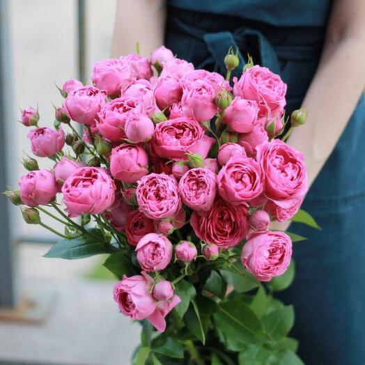 9 кустовых роз под лентой