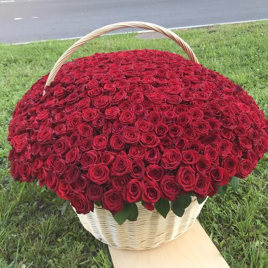 Корзина 501 роза