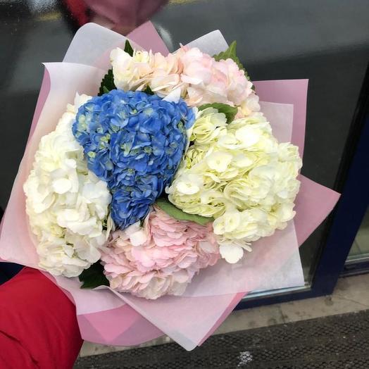 Гортензии микс 5 шт: букеты цветов на заказ Flowwow