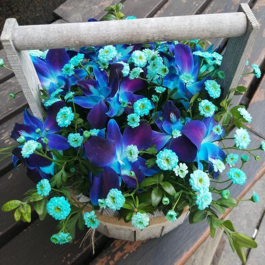 Необыкновенное лукошко с синей орхидеей: букеты цветов на заказ Flowwow