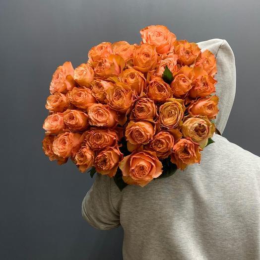Роза Эквадор сорт Кахала
