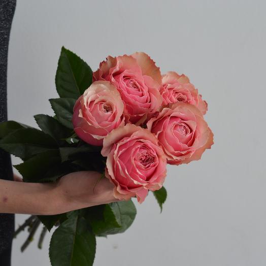 Lady Flowers - 5 пионовидных роз