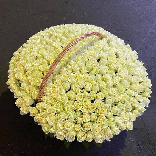 Белые розы 😍👍