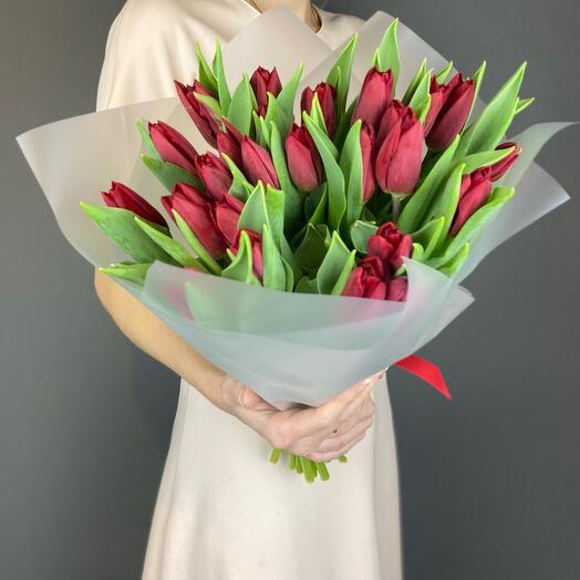 Моно красные тюльпаны 🌷