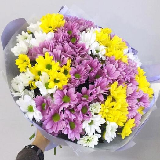 17 разноцветных хризантем