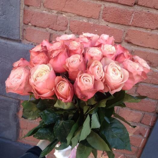 Монобукет 25 Роз сорта Kahala 60см