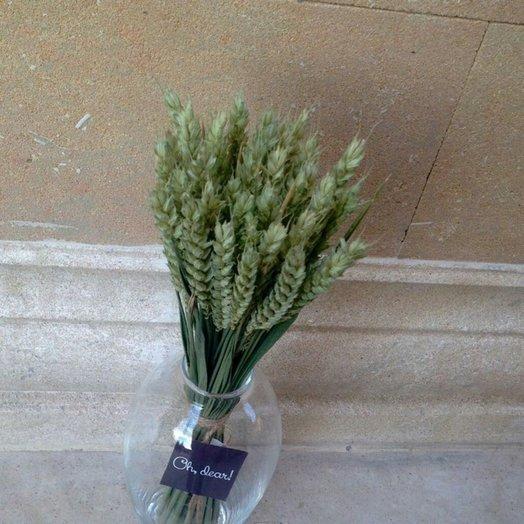 Букет из пшеницы: букеты цветов на заказ Flowwow