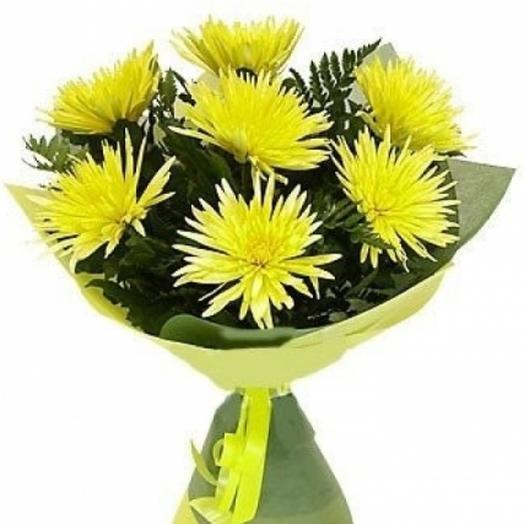 Букет из 7 хризантем: букеты цветов на заказ Flowwow