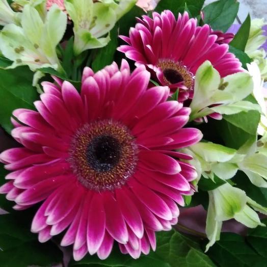 Самая: букеты цветов на заказ Flowwow