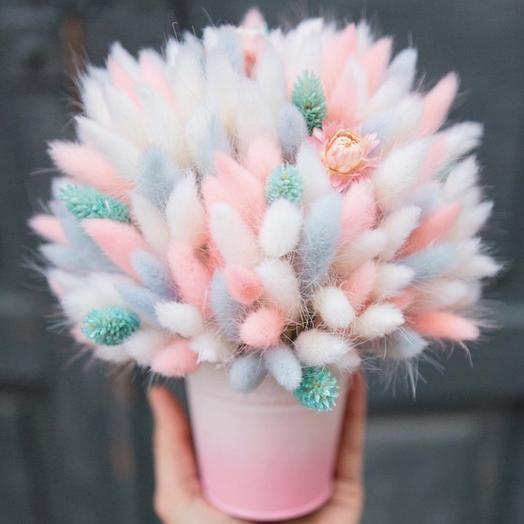 Облако лагуруса: букеты цветов на заказ Flowwow