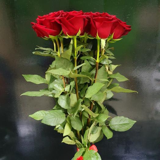 Букет 172: букеты цветов на заказ Flowwow