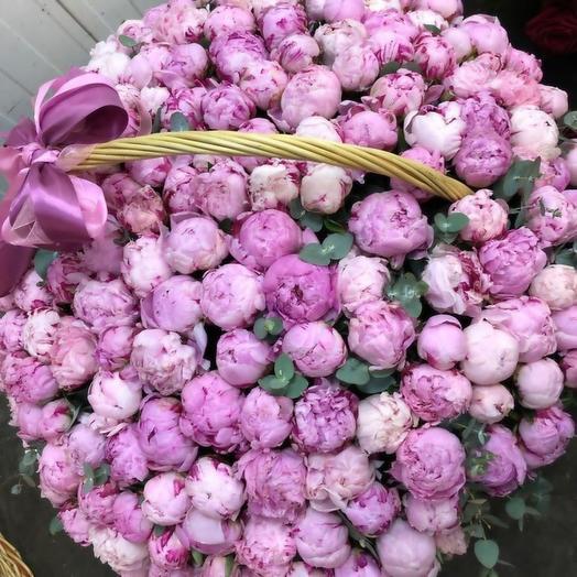 Пионы сара бернар в большой корзине 101 шт: букеты цветов на заказ Flowwow