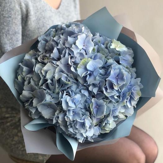 Букет из 5 пудровых голубых гортензий
