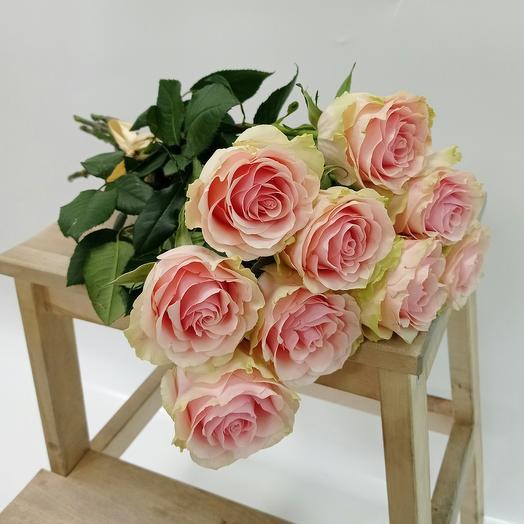 Нежно-розовые пионовидные розы