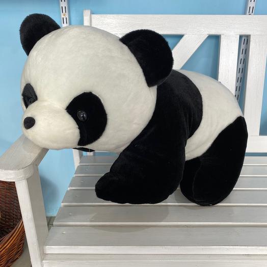 Панда милая