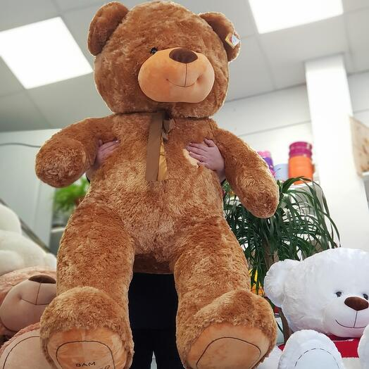 Медведь 24🦋