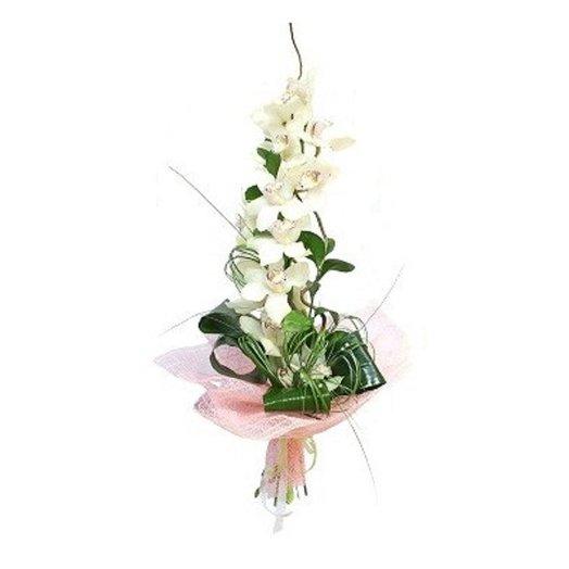 Орхидея белая: букеты цветов на заказ Flowwow