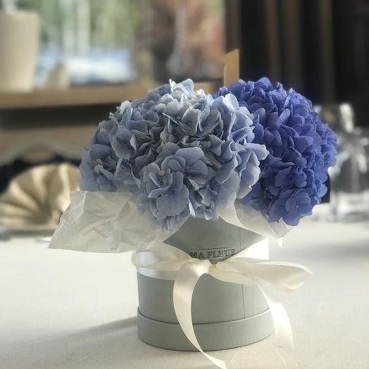 Шляпная коробка с гортензией Мини: букеты цветов на заказ Flowwow