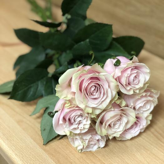 Роза «Пинк Мондиаль»: букеты цветов на заказ Flowwow