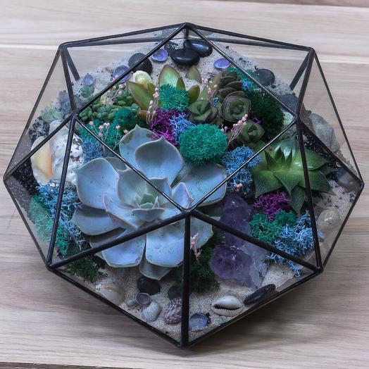 """Геометрический флорариум с суккулентами """"Венера"""": букеты цветов на заказ Flowwow"""