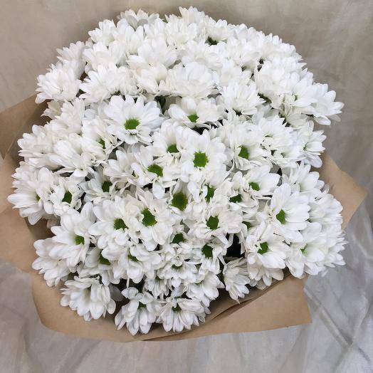 Белые ромашки 15