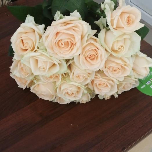 21 чайная роза 50 см