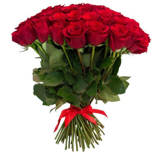 Букет из 25 красных эквадорских роз 50 см
