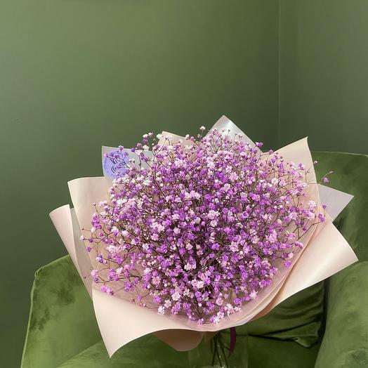 Моно гипсофила «Lavender»