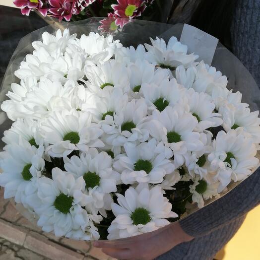 5 хризантем