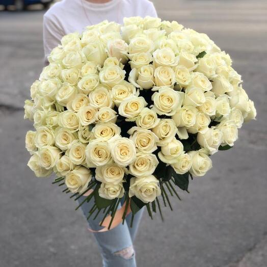 Белые розы 101штук