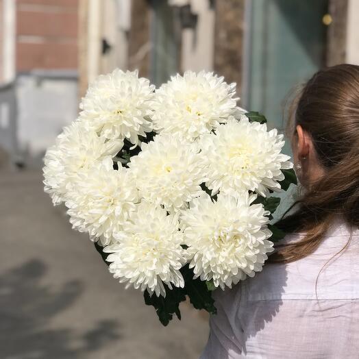 Монобукет из одноголовой хризантемы