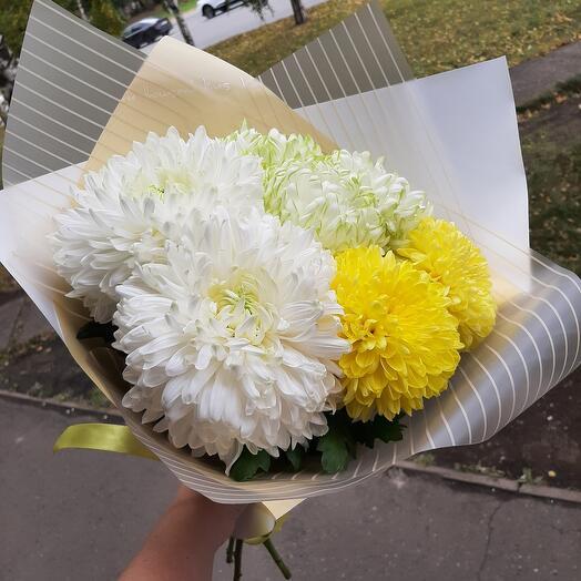 Микс одноголовых хризантем