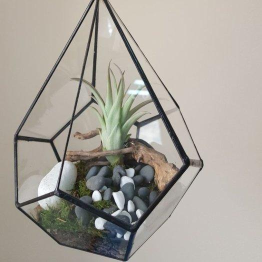 Флорариум подвесной Капля