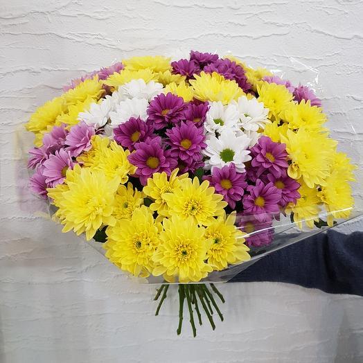 Хризантемы яркий микс: букеты цветов на заказ Flowwow