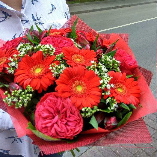 Огни Сентября: букеты цветов на заказ Flowwow