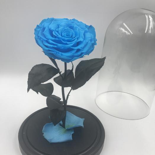 Голубая роза в колбе KING: букеты цветов на заказ Flowwow
