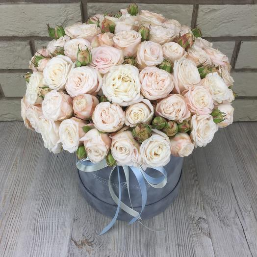 Пионовидные розы в бархатной коробке: букеты цветов на заказ Flowwow