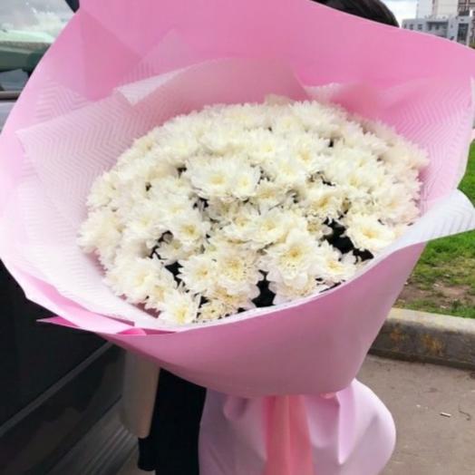 15 белоснежных хризантем