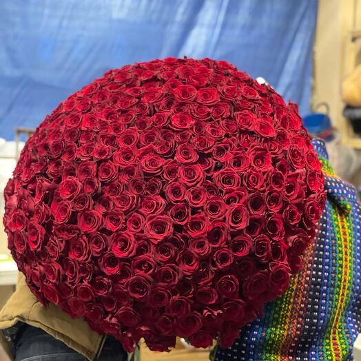 Монобукет 301 Роза