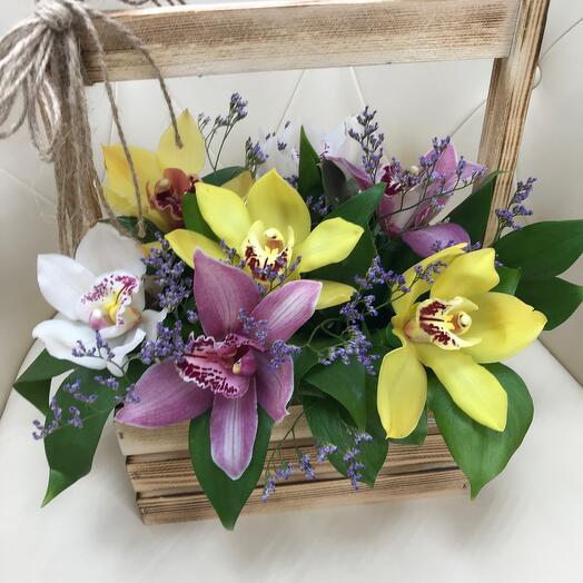 «Орхидеи»