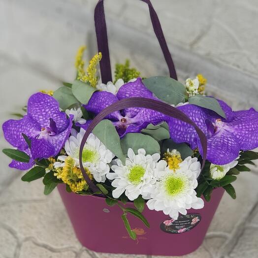 Корзина с орхидеями Ванда