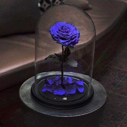 Неувядающа Роза из Красавицы и чудовища