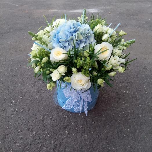 Голубоглазка: букеты цветов на заказ Flowwow