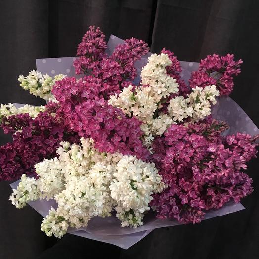 Ароматная сирень: букеты цветов на заказ Flowwow