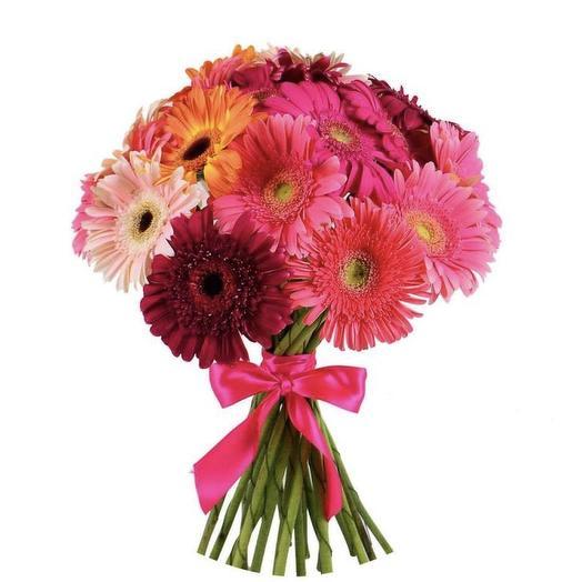 15 Гермини: букеты цветов на заказ Flowwow