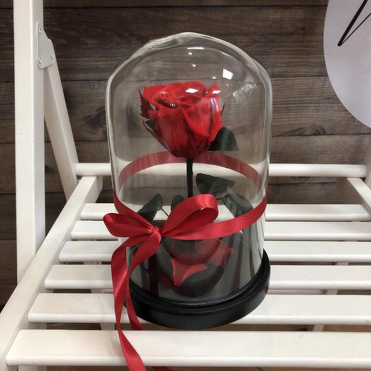 Rose in the flask: flowers to order Flowwow